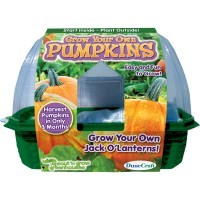 Grow Your Own Pumpkins Greenhouse Plant Kit