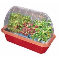Fly Trap Fiends Windowsill Greenhouse Plant Kit