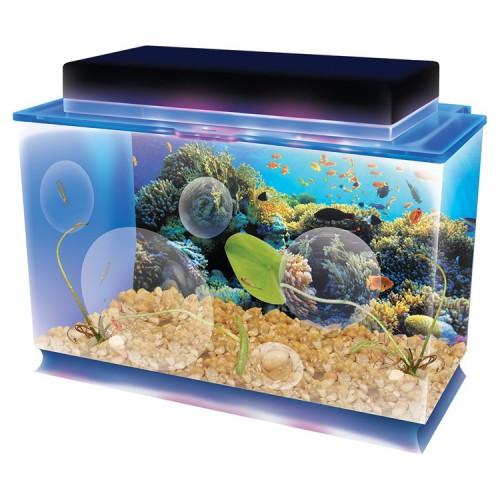 SeaQuarium Deluxe Aquatic Life Science Kit