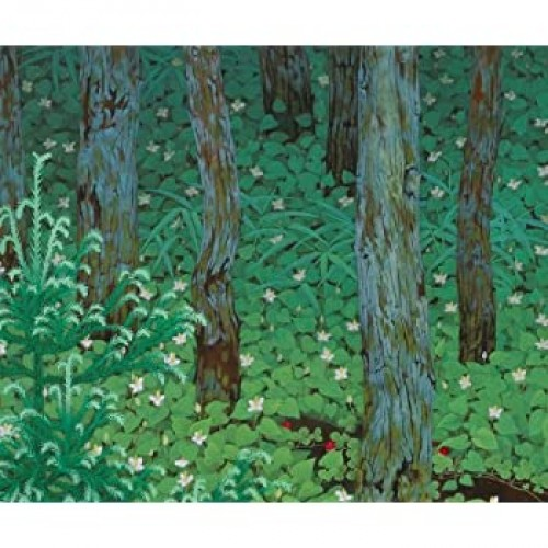 Artifact Puzzles Bokuyo Forest