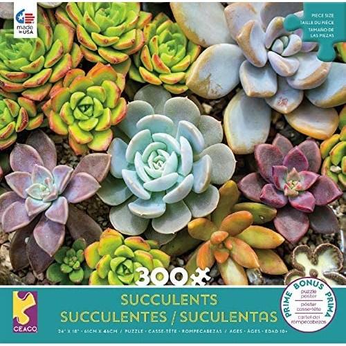 Succulents Rosette Puzzle 300