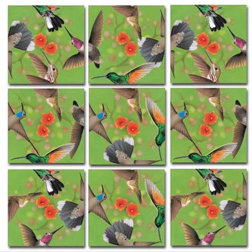 Bundle Of Scramble Squares B Dazzle Birds Puzzles For Adultsteenskids 3 Included North