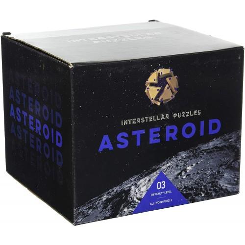 Project Genius Interstellar Puzzles Asteroid
