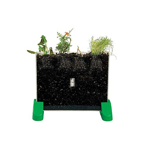 Fun Express Watch It Grow Plant Viewer – 1 Piece Educational and Learning Activities for Kids