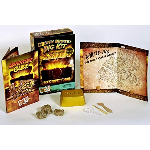 Discover with Dr Cool Golden Nugget Dig Kit – Excavate Real Specimens