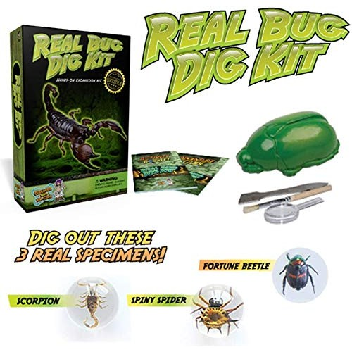 Discover with Dr Cool Real Bug Digging Kit – Excavate 3 Genuine Specimens