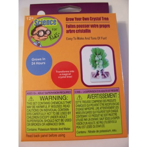 Science for Kids Thinking Cap Activities ~ Grow Your Own Crystal Tree Ages 12+