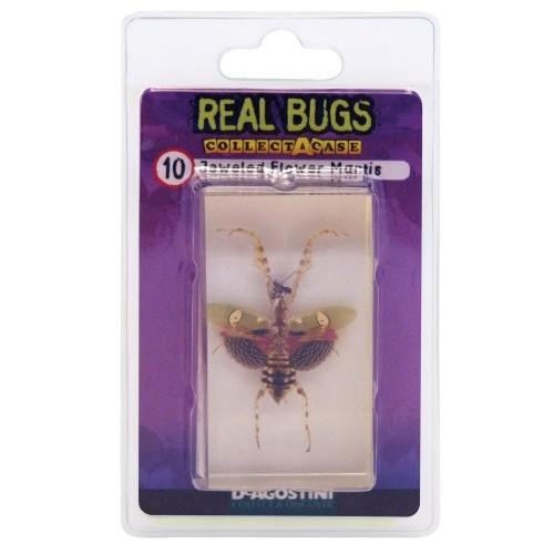 DeAgostini Real Bugs Jeweled Flower Mantis Bug