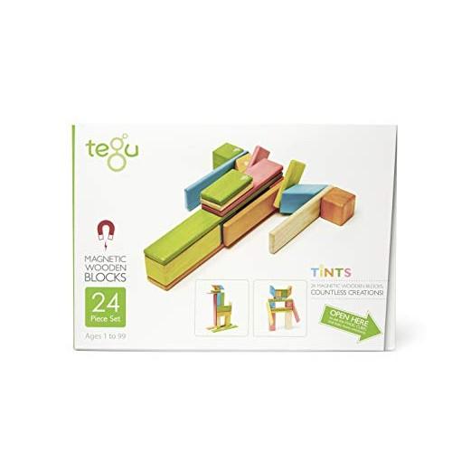 24 Piece Tegu Magnetic Wooden Block Set Tints