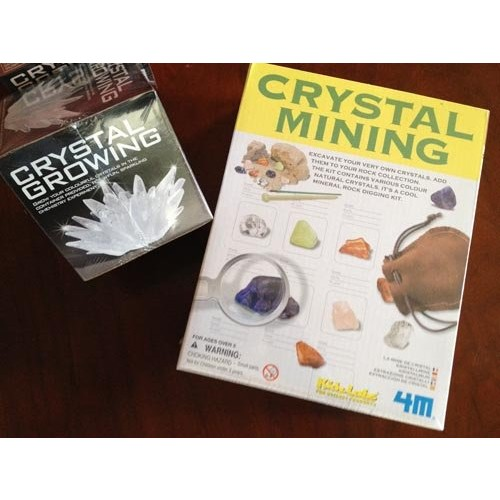 DINOSAURS ROCK Crystal Kits – Gift Pack of 2 Science Mining and Growing