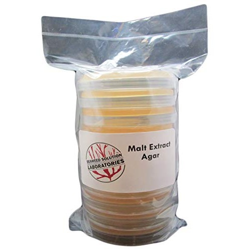 Malt Extract Agar – MEA 10 100 Millimeter Plates Sterile