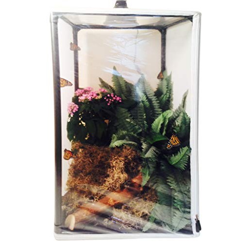 Educational Science Lepidtarium 38-Gallon -Butterfly Moth Insect Rearing & Breeding Cage 165 x 30-inches 473 Cu Ft LH38