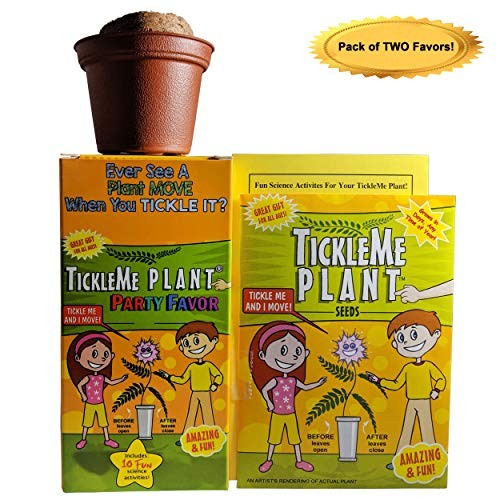TickleMe Plant 2 or Birthday Party Favors Leaves fold up When You Tickle It Minutes Later The Leaves Re-Open Great Stocking Stuffer