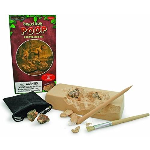 GeoCentral Dinosaur Poop Excavation Kit