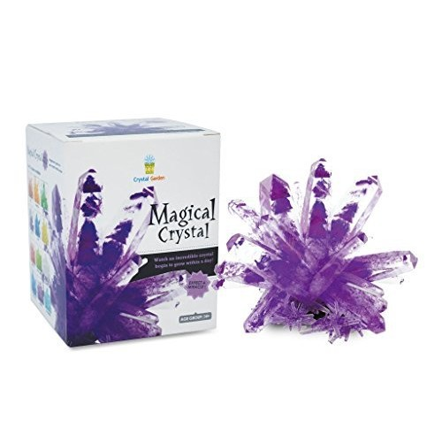 TEDCO Magical Crystal Kit – Grow Your own Creations Amethyst Purple
