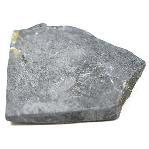 EISCO Carbonaceous Shale Specimen Sedimentary Rock Approx 1 3cm