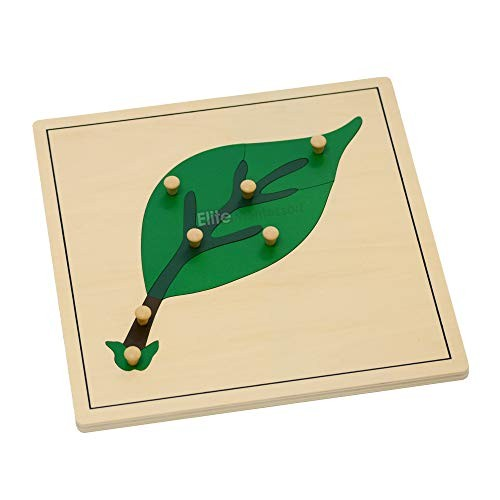 Elite Montessori Leaf Puzzles Toy for Preschool Early Child Development Learning Material