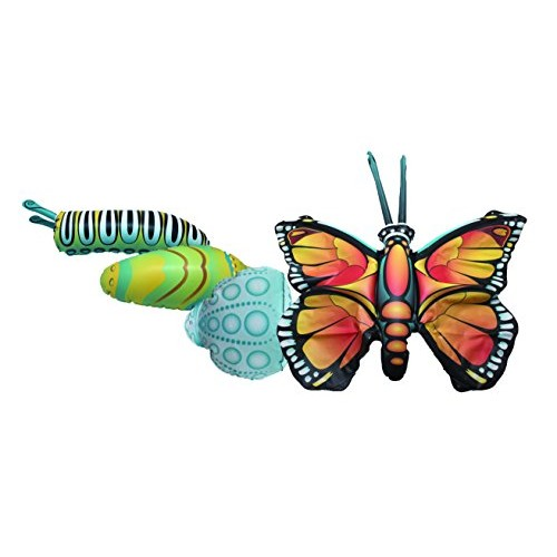 Giant Inflatable Butterfly Life Cycle Stages 4 Piece Set w 21 Inch