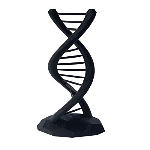 DNA Double Helix Science Gift 3D Printed