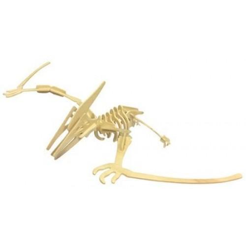 DENTT Pterosaur Wooden Dinosaur Skeleton Model