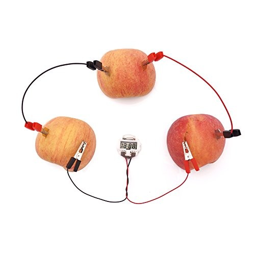 TommoT Fruit Battery-Potato Clock Science Experiment Kit for DIY Home Teaching Toy School Project and Education Subject Toys