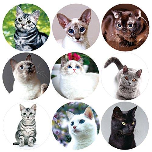 200 Pcs Realistic Cute Cat Stickers Kitten Roll Sticker for Party School Decoration Reward
