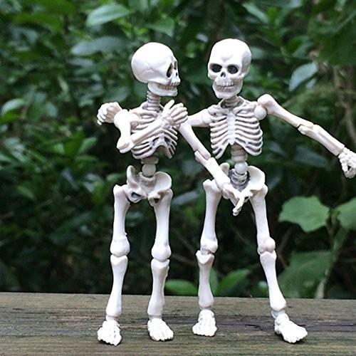 Kalttoyi Movable Mr Bones Skeleton Human Model Skull Full Body Mini Figure Toy Halloween