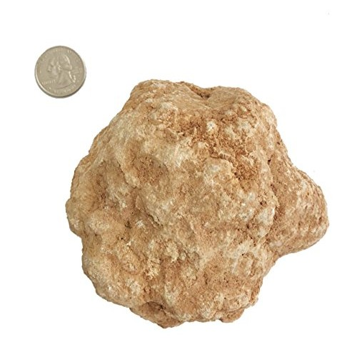 goldnuggetminer 1 Large Unbroken Sugar Geode from Africa 1 2 – Pound