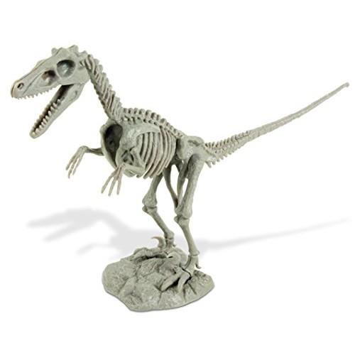Uncle Milton Dr Steve Hunters Dino Dig Excavation Kit Velociraptor-Scientific Educational Toy