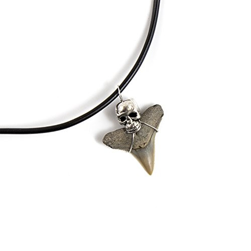 Beverly Oaks Mako Shark Tooth Necklace – Teeth Accessories for Archeology Lovers