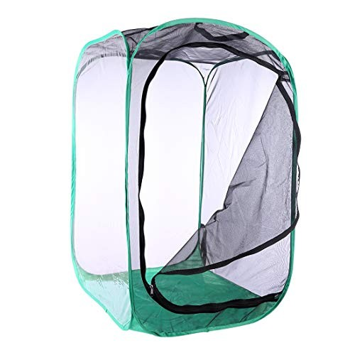 Yamix Insect and Butterfly Habitat Cage Terrarium House Collapsible Pop-up 354 Tall Black + Green