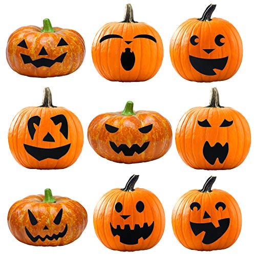 Elcoho Pumpkin Decorating Craft Kits Halloween Stickers Makes 9 Pumpkins