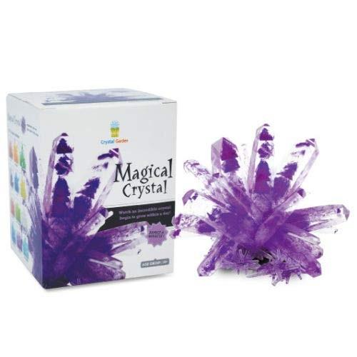 Big Game Toys~Magic Crystal Growing Kit Mystic Rock Garden DIY Science Experiment Amethyst Purple