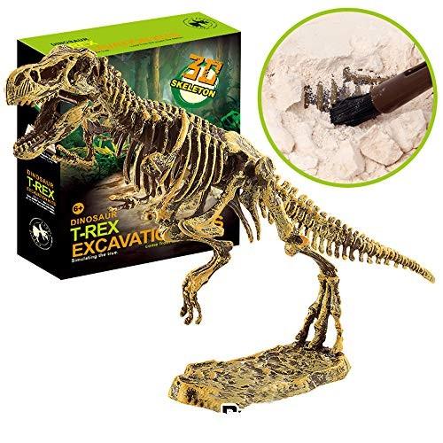 Huikai Science Educational Dinosaur Fossil Dig Kit Toys for Kids Digging Excavation Tools Tyrannosaurus Rex