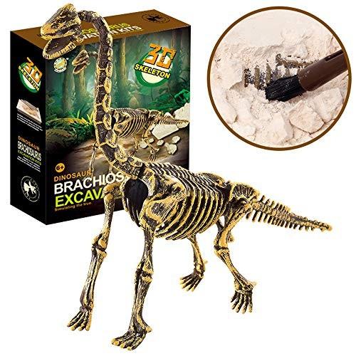 Huikai Science Educational Dinosaur Fossil Dig Kit Toys for Kids Digging Excavation Tools Brachiosaurus