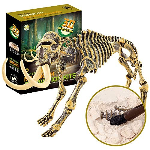 QIKI Science Educational Dinosaur Fossil Dig Kit Toys for Kids Digging Excavation Tools Included Hammer Chisel Brush Mammoth