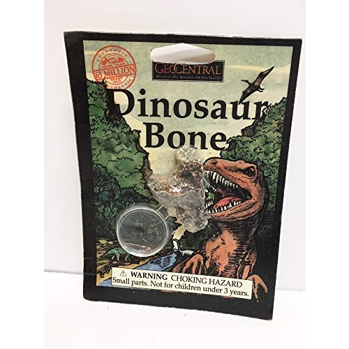 GeoCentral Dinosaur Bone and Magnifier Toy Science Set