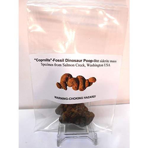 Coprolite-Fossil Dinosaur Poop-Like Siderite Mass Specimen from Salmon Creek Washington
