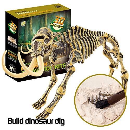 BasdeScience Dinosaur Toys Educational Dig Kit Fossil Excavation Kits Holiday Toy List for kids Boy Girl C
