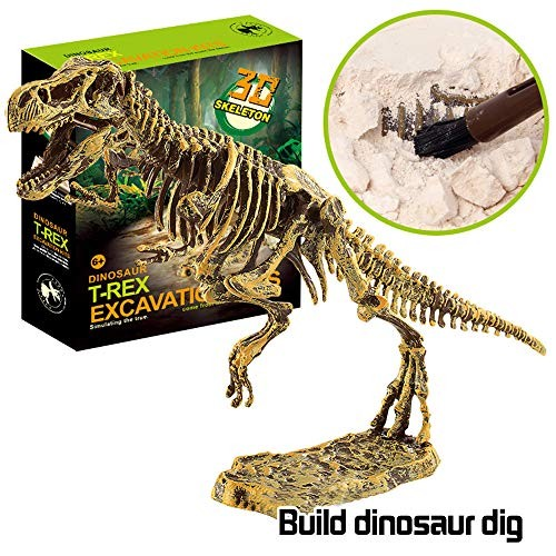 Dinosaur Excavation Kits for KidsChildren's Popular Science Education Toys – DIY Fossil KitsTyrannosaurus Rex