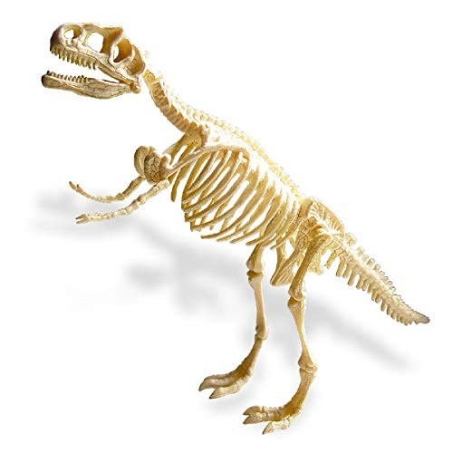 iSTONE Dig A Dino Blocks Dinosaur Toys Science Educational Kit Fossil Excavation Kits Tyrannosaurus Rex