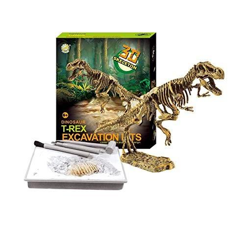 Chi Mercantile Dinosaur Excavation Kit 3D Dino Fossil Bones Paleontology Toy Set T-Rex
