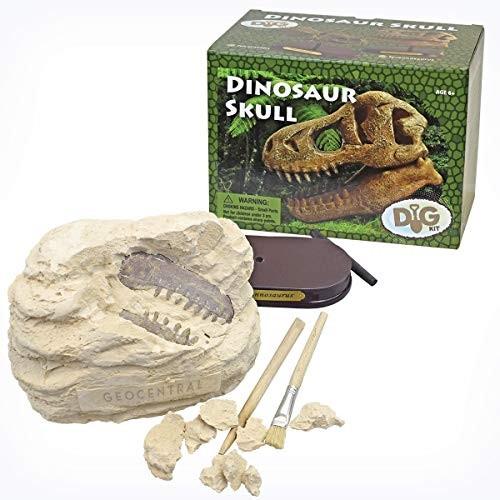 GeoCentral Dinosaur Skull Dig Kit
