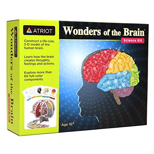 Wonders of The Brain Science Kit Explore Human Ages 10+