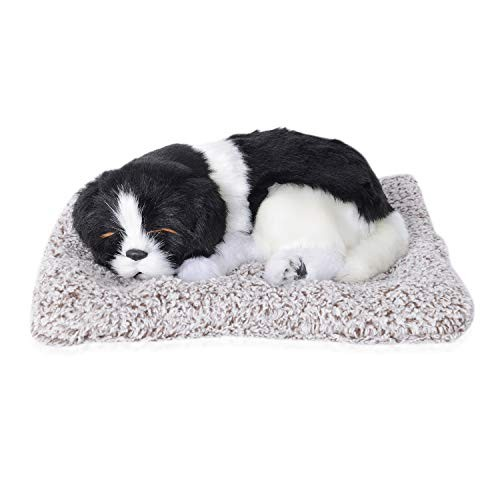 Shop LC Delivering Joy Border Collie Puppy Pet Dog Sleeping on Mat Warm Soft Bed Pad Indoor for Dad