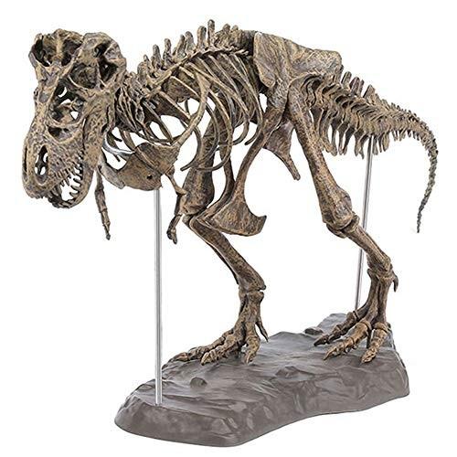 Eugeneq Tyrannosaurus Rex Skeleton Dinosaur Animal Collector Decor Model Toy