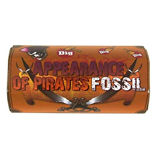 Barry Owens Pirate's Treasure Fossil Excavation Toy 3 3 4 Inch