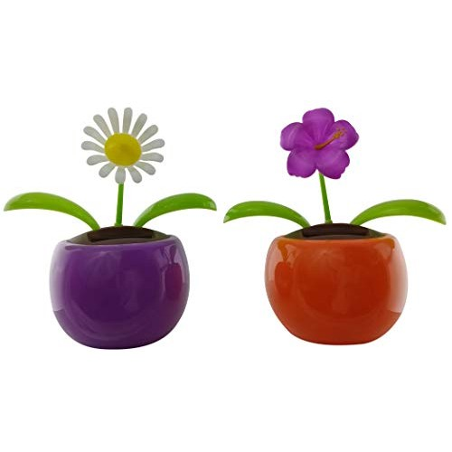 Eco-friendly Solar Powered Dancing Flower Toys Purple Wildflower and White Daisy Flowers in Decorative Pots Office Desk Car Dcor Sunflowers colorful 2 Pack