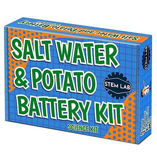 Salt Water + Potato Fruit Battery STEM Kit for boys and girls age 8-10 to learn chemistry & electronics with vinegar soda lemons more Great family activity or homeschool lesson