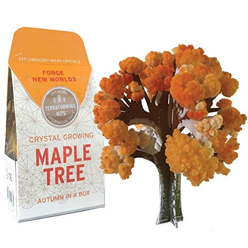 Copernicus Toys Crystal Growing Maple Tree Official Terraformer kit Grows in Hours